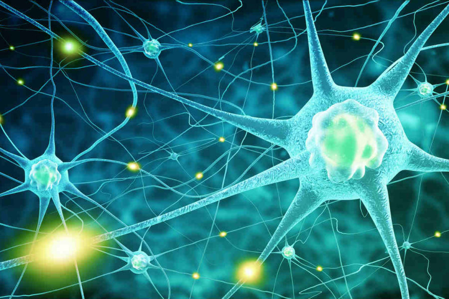 Neurological Issues –Symptoms, Causes and Effects